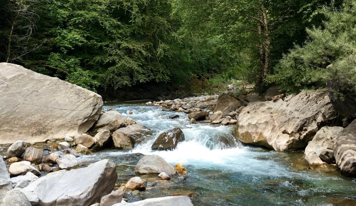 Torla Stream